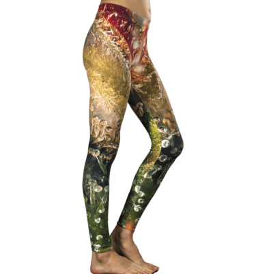 Algae Bath Cannabis Leggings